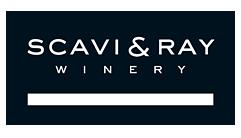 SCAVI&RAY